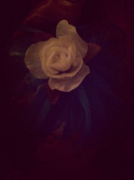 I Always look At This FloWer ...