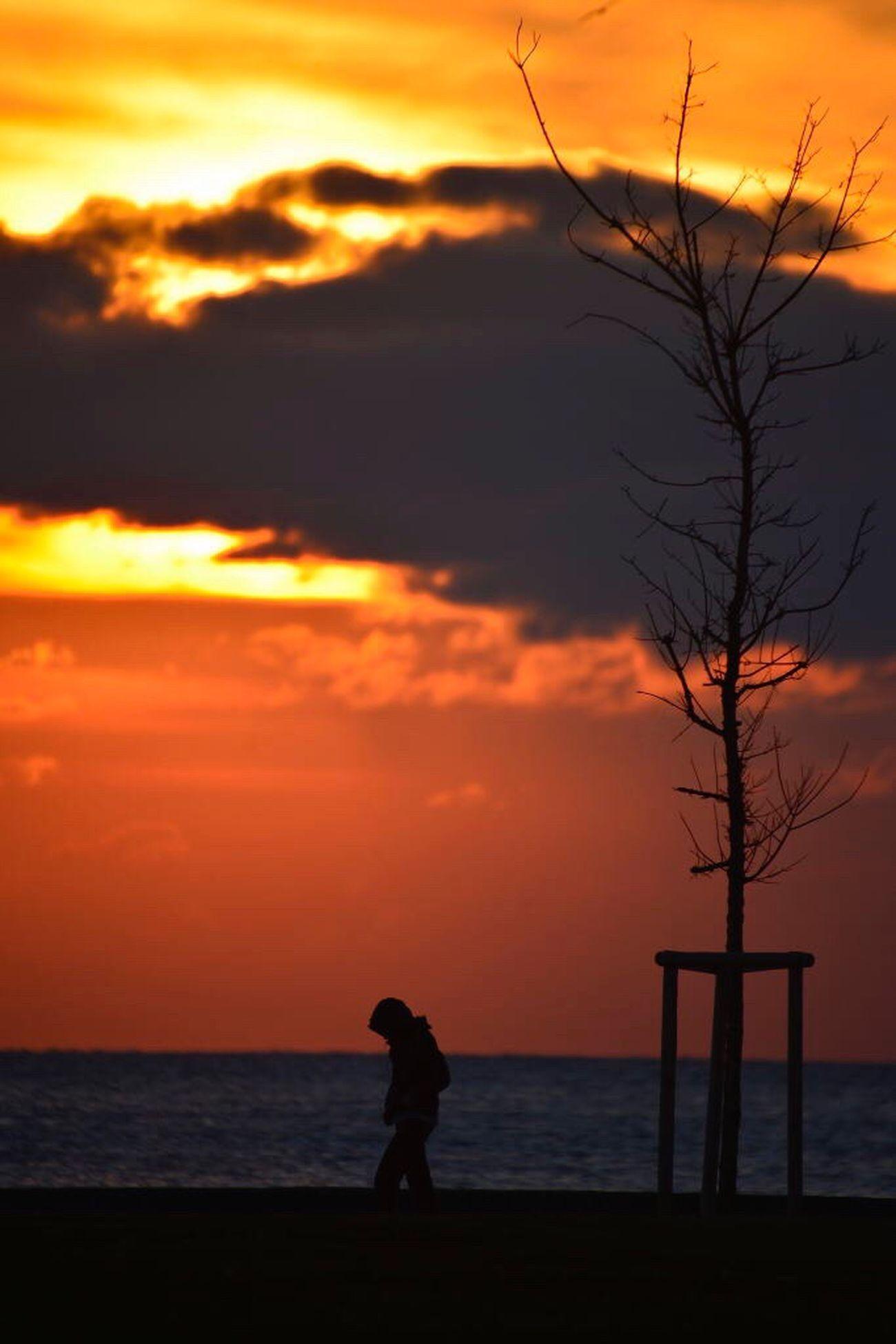 Long Goodbye Sunset Silhouette Horizon Over Water One Person People Silhouette Istanbul Turkey Bostancı Sky Orange Color Sea Cloud - Sky Scenics