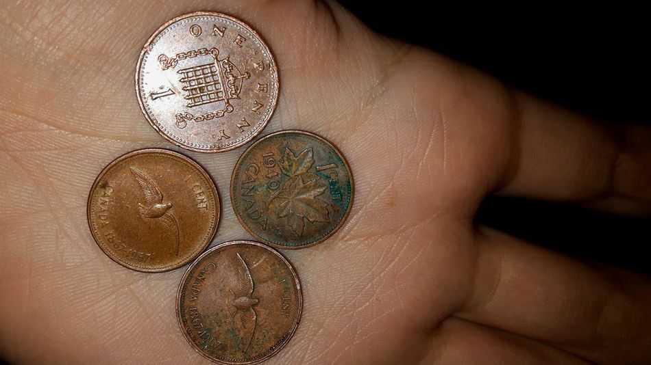 :) Close-up Human Hand Holding Indoors  Mylife Photooftheday Cool Old Pennies Penny Historic History Goodvibes Pretty Different Perspective Photography Beautiful Smile Queen Elizabeth  Dove Bird Money Change Coin Oldcoin