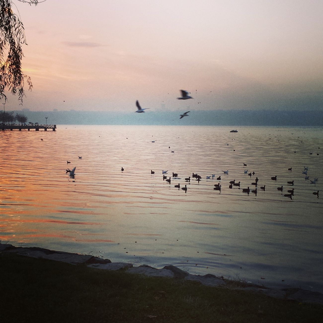 Istanbul Küçükçekmece Kanarya Gölü Gün Batımı✴