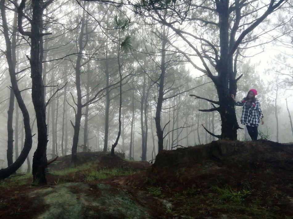One day I'll find you 🙏 Sagada Adventure Blue Soil Wanderlust Intothewoods First Eyeem Photo