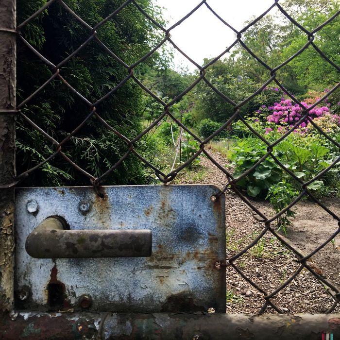 Garden Garden Photography Gardening Gardens Doors Lover Come In View Door Handle Handle Berliner Ansichten