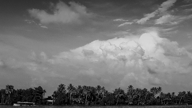 The captivating Beauty of Kerala!! Atmospheric Mood Black And White Black And White Cloudscape Black And White Photography Black And White Scenery Cloud Cloud - Sky Cloudscape Cloudy Dramatic Sky Kerala Kerala India Landscape Natural Light Outdoors Scenery Scenery_collection Scenic Scenics Sky Tranquil Scene Tranquility Weather