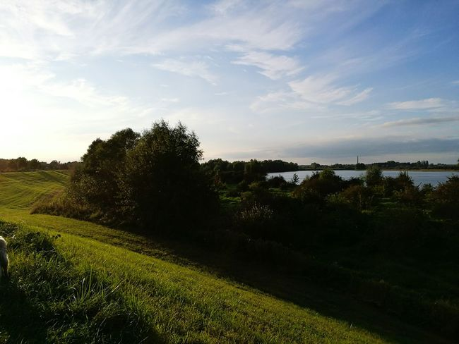 Tranquil Scene Tranquility Sky Landscape Scenics Water Tree Beauty In Nature Growth Sea Nature Field Non-urban Scene Plant Agriculture Footpath Rural Scene Green Color Day Cloud