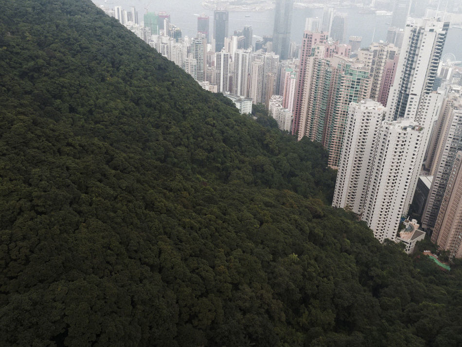 Beautiful stock photos of hong kong, Architecture, Beauty In Nature, Building Exterior, Built Structure