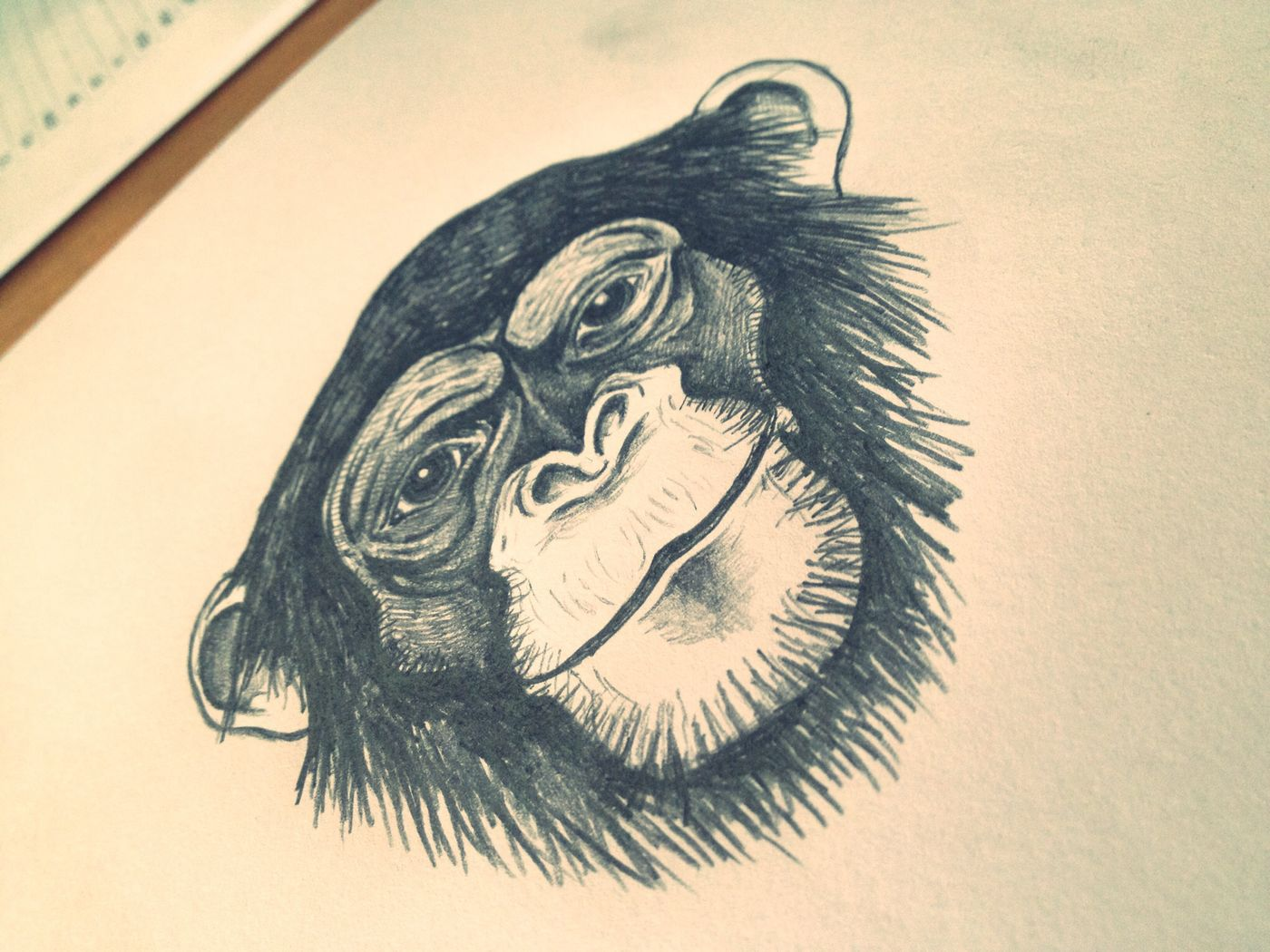 Drowning Monkey Myartwork