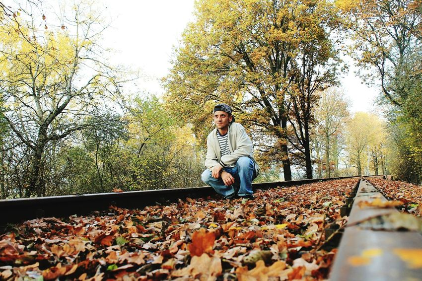 Learn & Shoot: Leading Lines Leading Lines Tree_collection  Nature Photography Nature_collection Autumn 2015 Autumn Collection Autumn🍁🍁🍁 Pattern Pieces Autumn Colors Autumn Train Tracks Selfportrait Me, My Camera And I Colors Of Autumn Learn & Shoot: After Dark Landscape_Collection Learn & Shoot: Working To A Brief Risking It All For The Perfect Shot Picturing Individuality Perfect Match My Best Photo 2015Nature On Your Doorstep Self Portrait Around The World Showcase: November