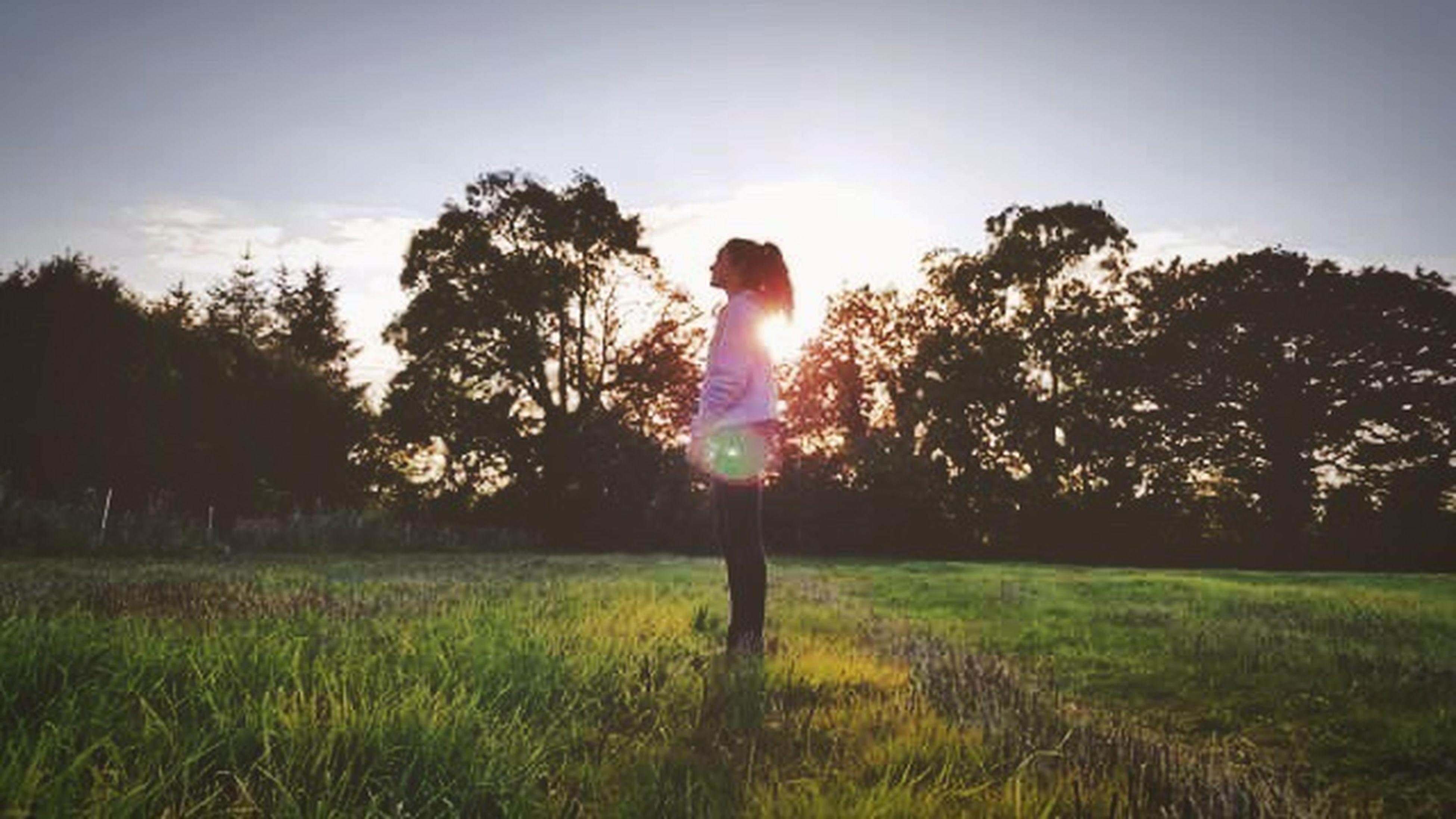 tree, grass, landscape, field, grassy, tranquil scene, tranquility, lifestyles, sunlight, growth, leisure activity, nature, green color, beauty in nature, scenics, non-urban scene, lens flare, sun, sunbeam, day, sky, solitude, rural scene, grass area, remote, bright