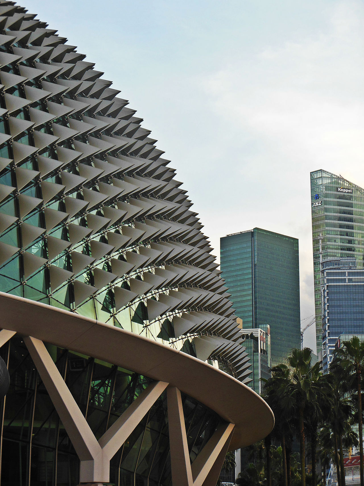 Architecture Building Exterior Dragon Fruit Esplanade Esplanade-theatres On The Bay EyeEm City Photography EyeEm City Shots Low Angle View Singapore View Skyscraper Spiky Unusual Architecture