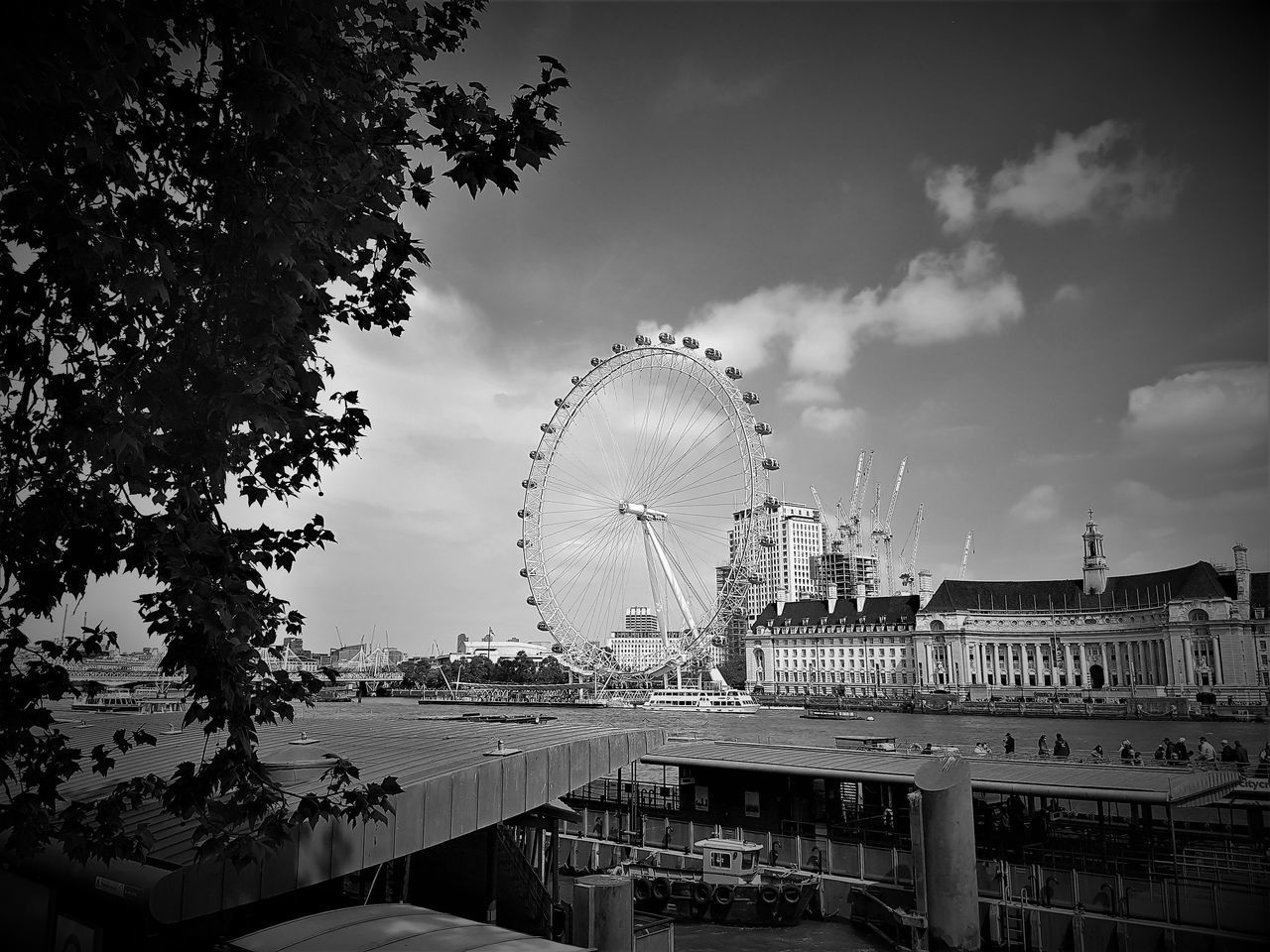 Architecture Big Wheel Black And White Built Structure City City Of Westminster Cloudy Sky Day London London Eye London Eye Tourist Attraction London Eye, London London Eye🎡 London Lifestyle London Trip Nature No People Outdoors River Thames River Thames London Sky Tourist Attraction  Tourist Destination Travel Destinations Tree