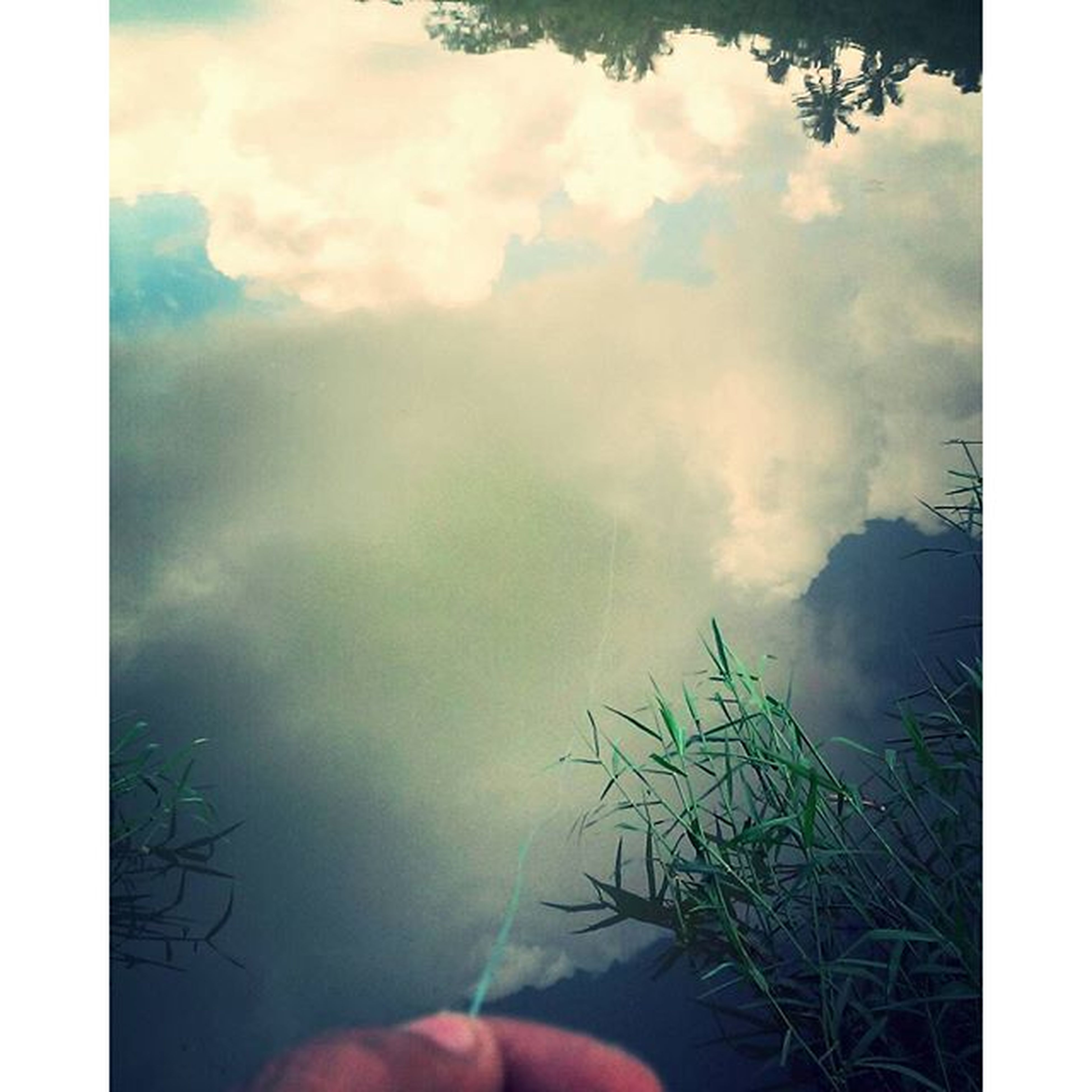 transfer print, auto post production filter, sky, cloud - sky, one person, nature, cloudy, beauty in nature, tranquility, cloud, water, part of, scenics, outdoors, person, day, tranquil scene, weather, tree