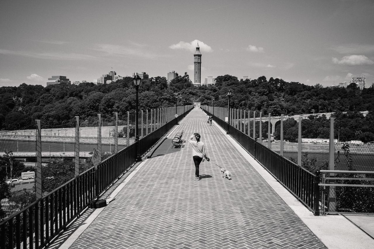 Black & White Blackandwhite Bridge Day Dog High Bridge High Bridge Watertower New York New York City Walking Walking Dog Washington Heights