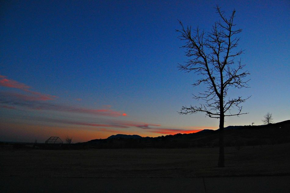 Sunrise Colorado Scenics No People Beauty In Nature Tree Sky Outdoors Exploremore Viewcolorado TheGreatOutdoors GreettheoutdoorsNature Colorado Springs CO USA Dawn Morning Pastel Power A Game Of Tones Backgrounds Earth Outdoor Photography ExploreEverything Outdoor Wanderlust Cloud - Sky