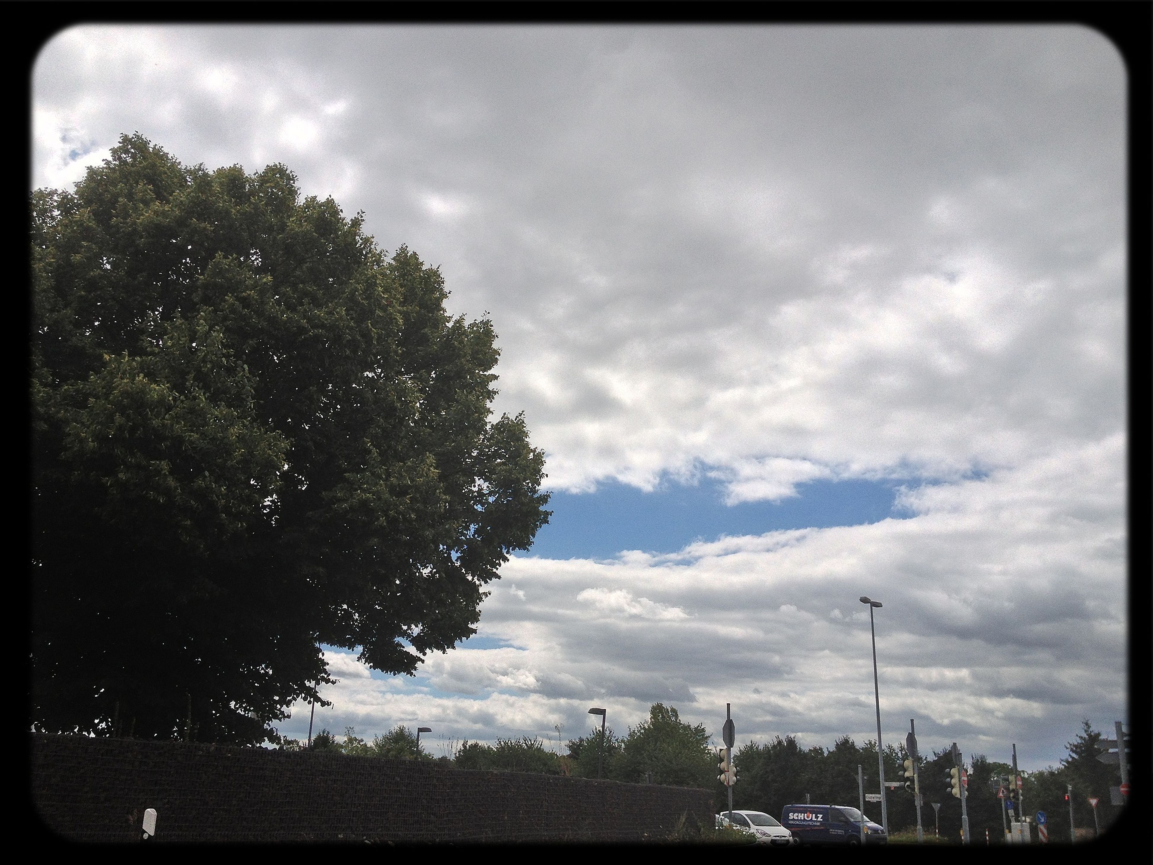 transfer print, sky, auto post production filter, tree, cloud - sky, cloudy, cloud, car, transportation, low angle view, land vehicle, nature, outdoors, growth, road, overcast, day, no people, silhouette, beauty in nature