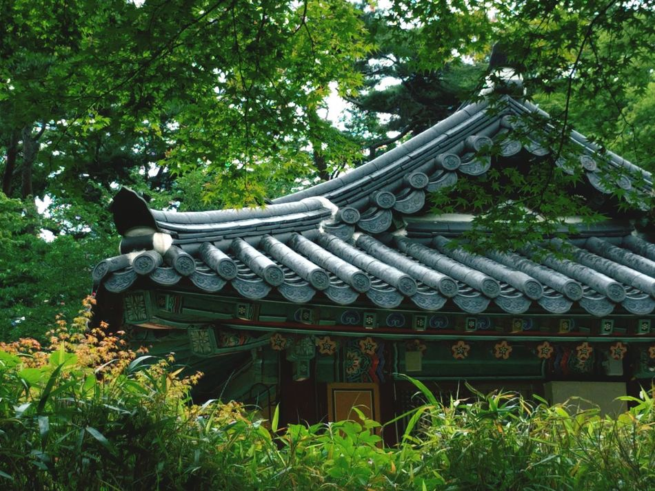 Tiled Roof  Korean Traditional House Healing Relax Buddhist Temple