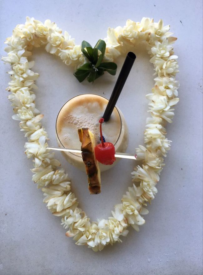 Liquid Lunch Piña Colada Lei Kauai