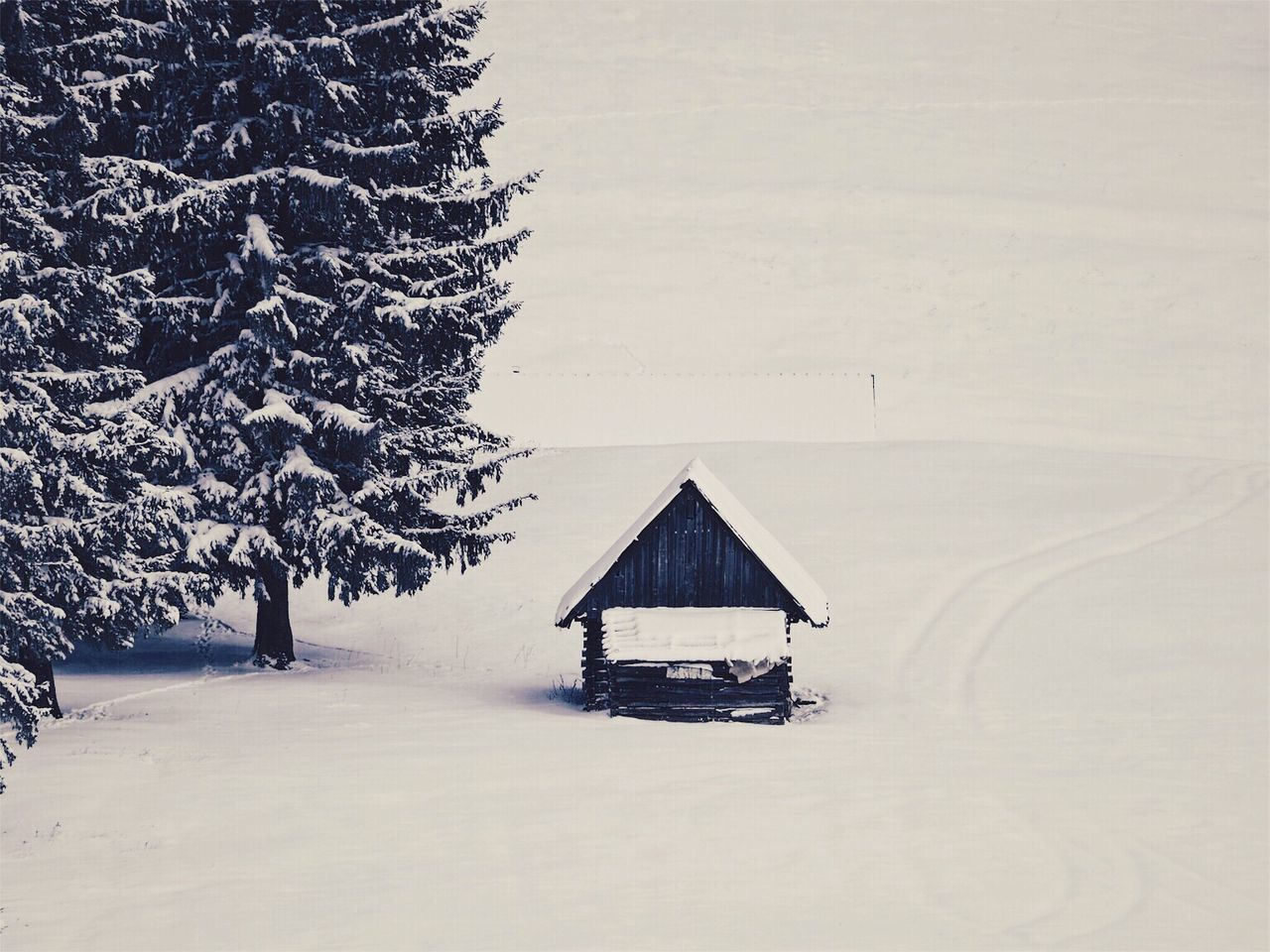 Winter Cold Temperature Snow Nature Beauty In Nature Tree No People Built Structure Scenics Landscape Tranquil Scene Outdoors Architecture Day