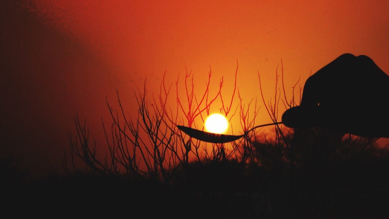 Silhouette Sunset Scenics Day Evening Silhouette And Sky Capture My Sun Nature Beauty In Nature Desi_diaries Fields And Sky Indiapictures DSLR Hobbyphotography Indianshutterbugs Indiatravelgram Rajasthandiaries Worldbestgram The Great Outdoors - 2017 EyeEm Awards