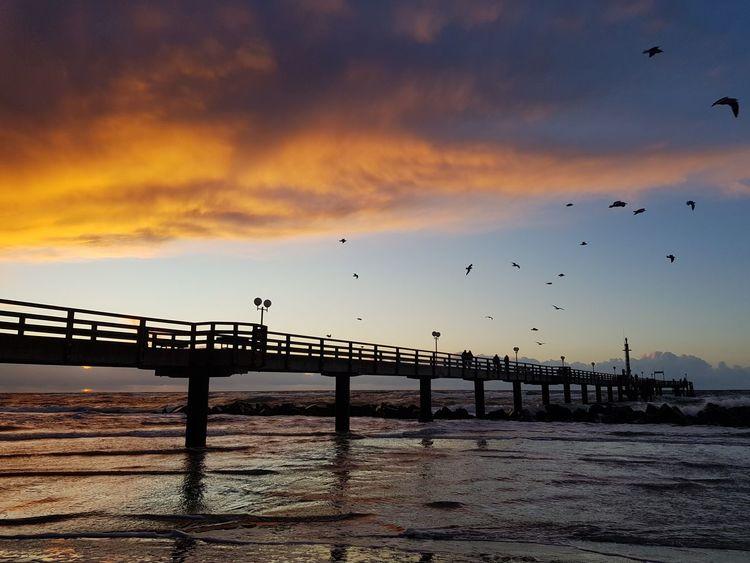 Ostsee, sun, Bird Sunset Silhouette Cloud - Sky Outdoors Nature Lights Vibrant Color