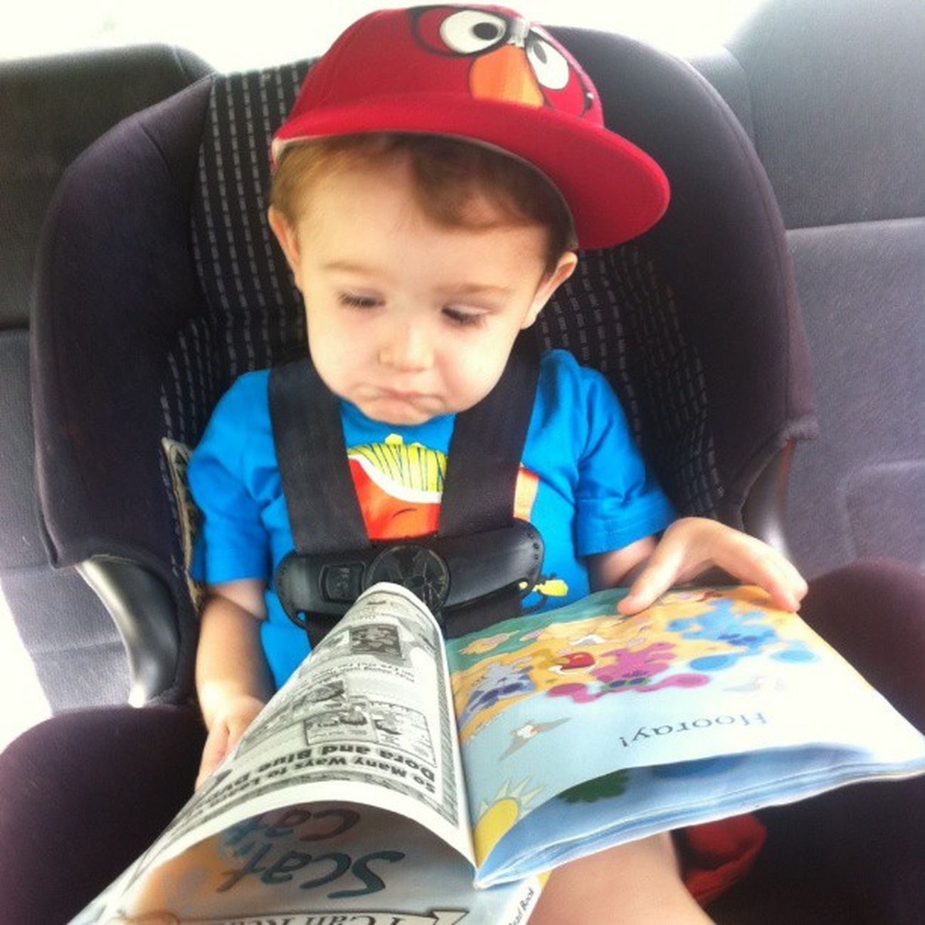 Cutestkidever Reading Elmo