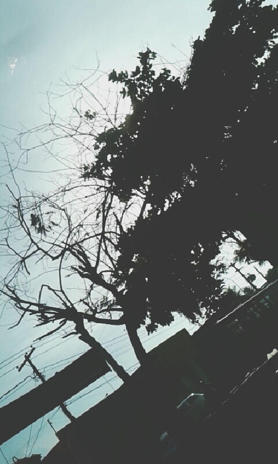 Cuide da natureza enquanto pode ;) Nature