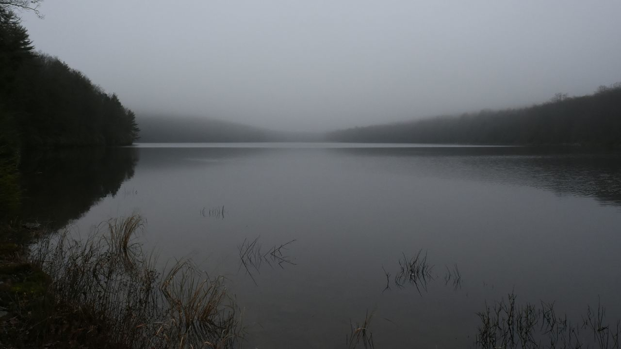 Moody. Fog Foggy Lake Water Weather Moody Schuylkill Mist Misty Nikon Nikon D7200 DSLR The Great Outdoors - 2016 EyeEm Awards The Great Outdoors With Adobe Outdoors Nature EyeEm Nature Lover EyeEm Best Shots EyeEm Best Shots - Nature EyeEm Gallery Horizon Over Water Horizon