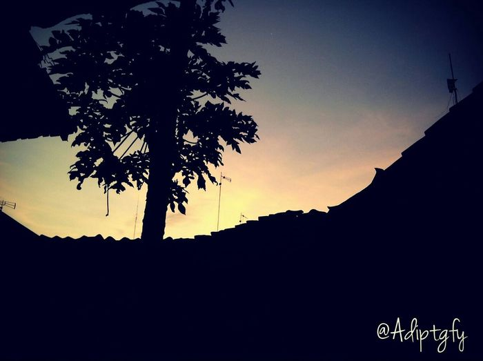 Adiptgfy Sunrise Mondaymorning