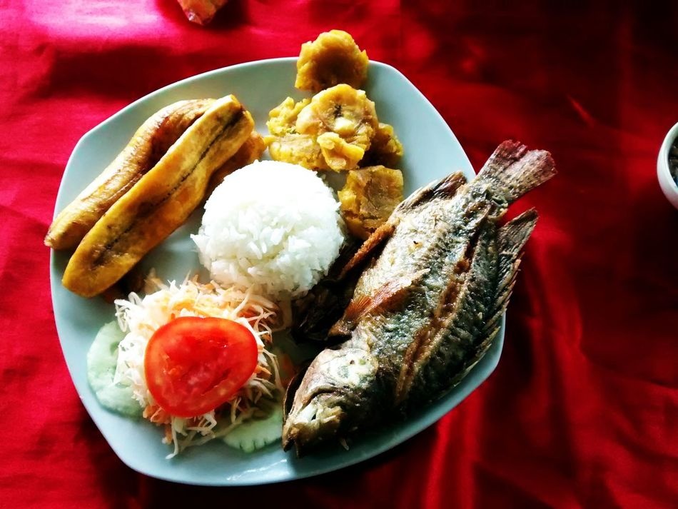 Tipical dish 😱Food And Drink Plate Food No People Freshness Close-up Healthy Eating Ready-to-eat Day EyeEm Best Shots Eye4photography  Amazonian Tour Trip In Peru Popular Photos