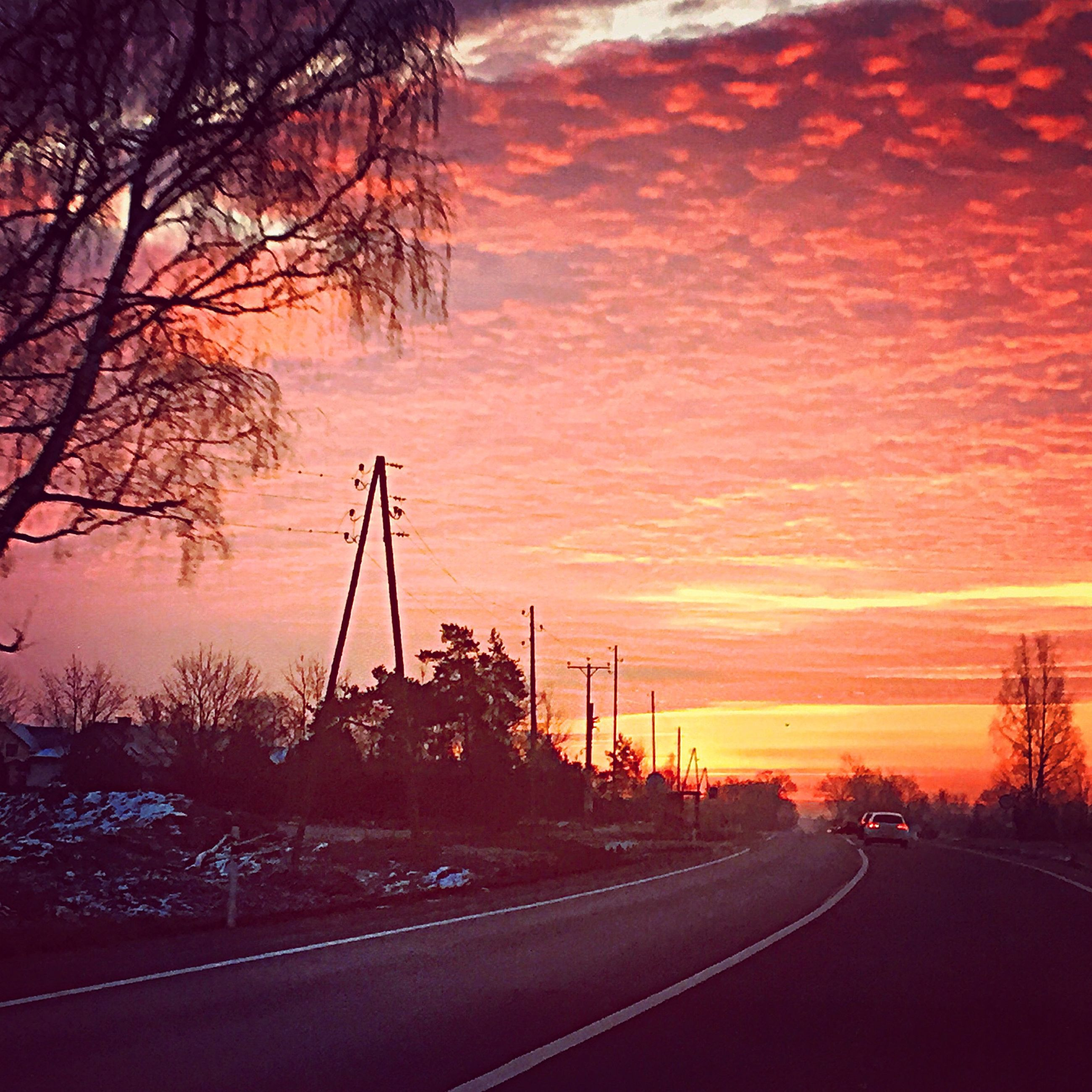 sunset, transportation, the way forward, road, orange color, sky, tree, silhouette, diminishing perspective, cloud - sky, dramatic sky, scenics, vanishing point, beauty in nature, nature, tranquility, tranquil scene, bare tree, road marking, electricity pylon
