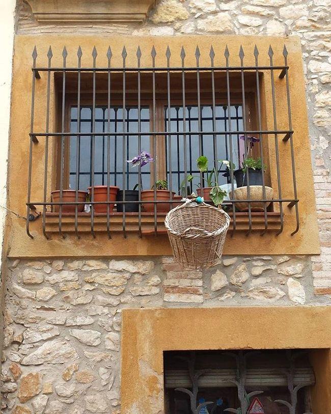 Cistella Basquet Basket Basketball Sensefiltres Nofilters Streetbasket Streetbasketball