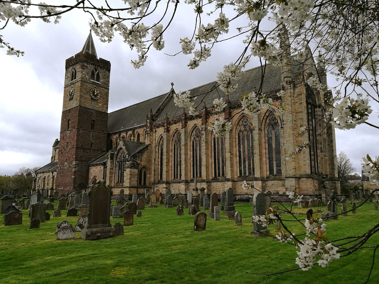 Dunblane Cathedral Grass History Outdoors Day Architecture No People Sky Historical Building Scotland Built Structure Building Exterior Architecture Beauty Springtime Huawei P9 Leica BlossomDunblane Cathedral Dunblane Plant Petal Sun Sunlight Cathedral Cathedrals  Dunbl