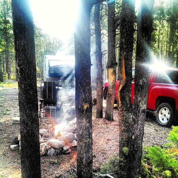 Morning Campfire sun shining Beartooth