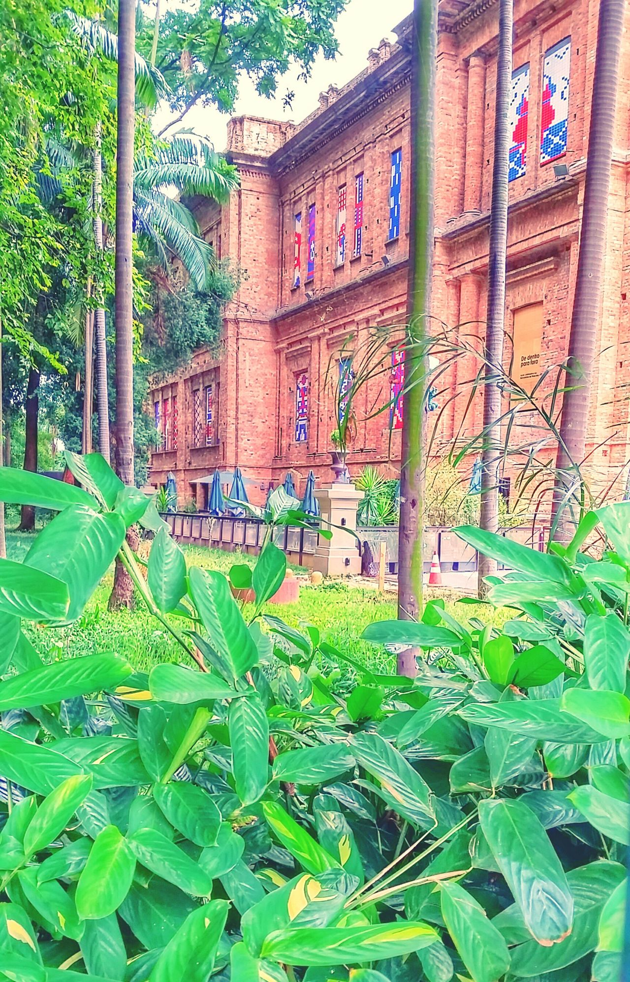 Built Structure Plant No People Nature Park Sao Paulo - Brazil Pinacoteca - SP Park Luz Building Architecture Brick Wall