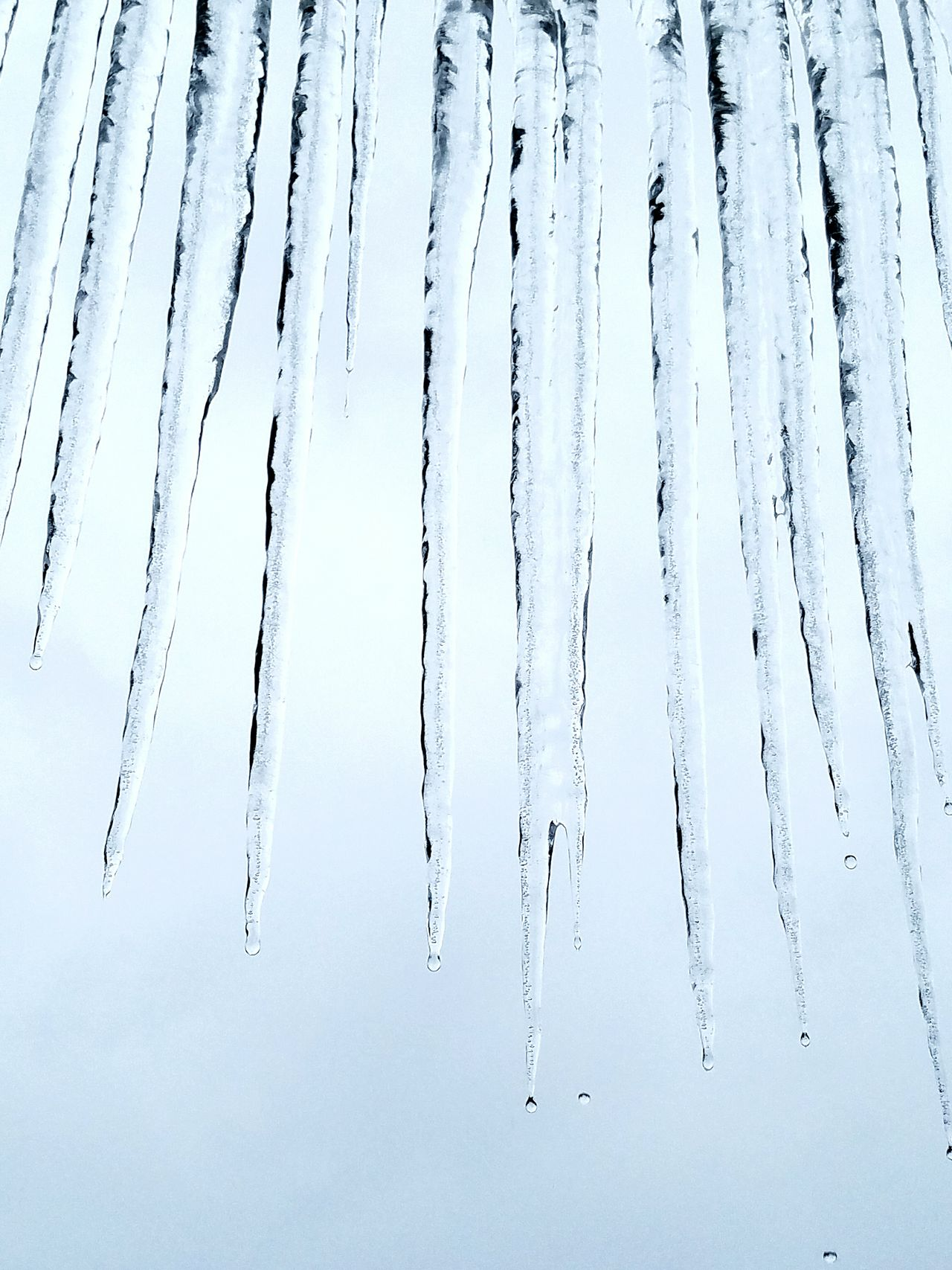 No People Water Cold Temperature Day Outdoors Ice Icicles Icicle Clear White