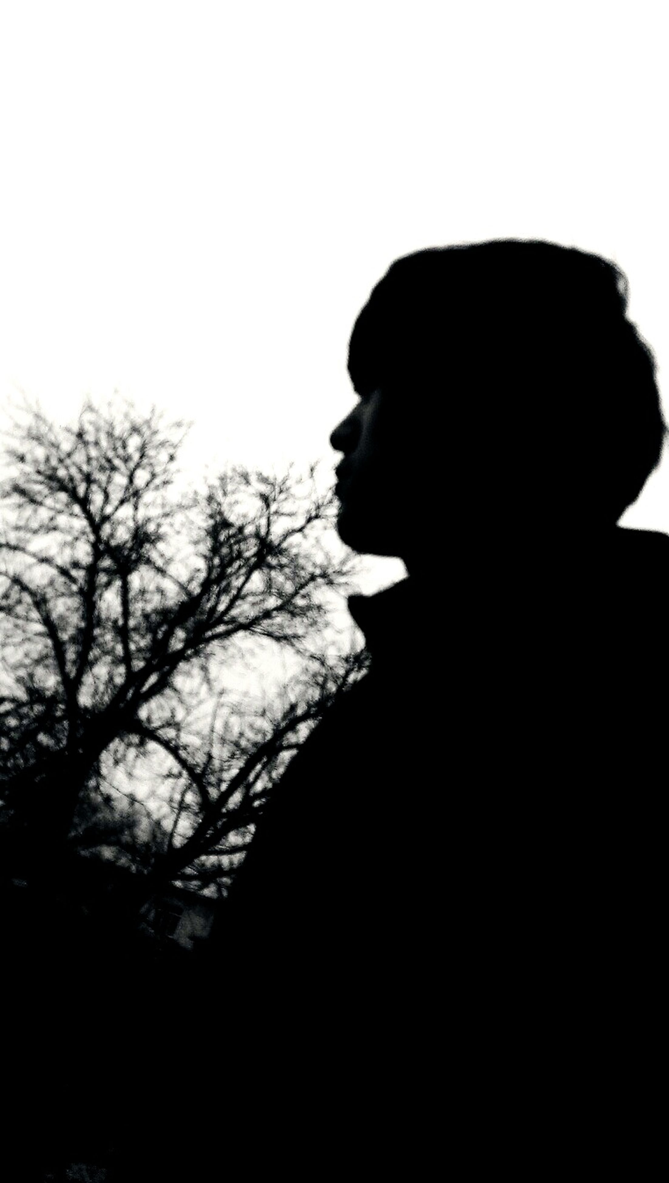 silhouette, lifestyles, headshot, contemplation, copy space, young adult, waist up, leisure activity, side view, looking away, standing, head and shoulders, young women, three quarter length, clear sky, sky, person, tree