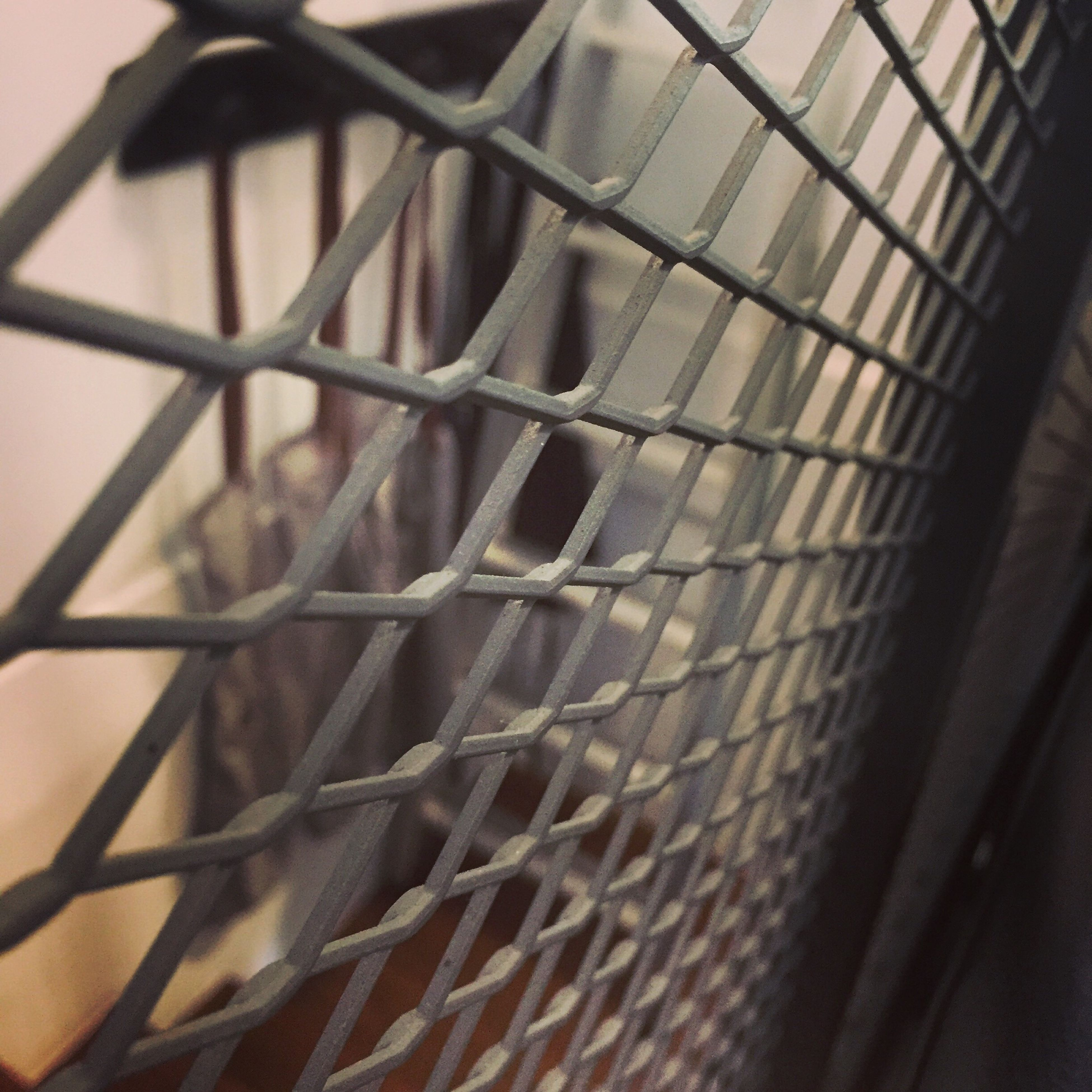 close-up, fence, safety, protection, security, metal, focus on foreground, full frame, chainlink fence, day, nature, no people