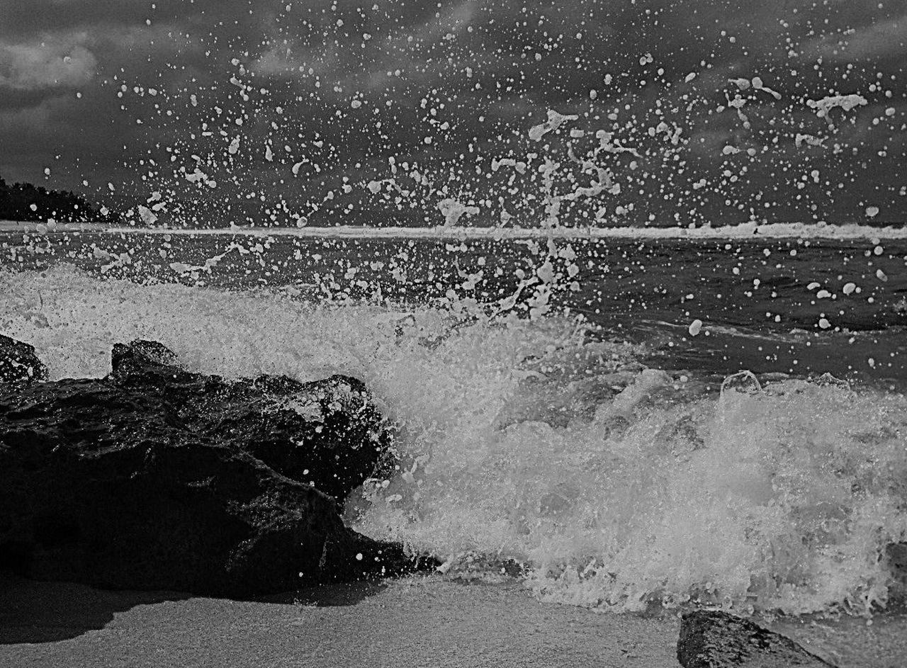 Hawaii Nature Beach Taking Photos