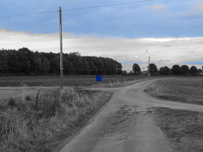 Tree Transportation Road The Way Forward Landscape Sky Tranquil Scene Diminishing Perspective Tranquility Cloud - Sky Nature Long Cloud Country Road Countryside Outdoors Vanishing Point Day Blue Non-urban Scene Crossroads Bnw_captures Bnw_collection Post Box  Bnw