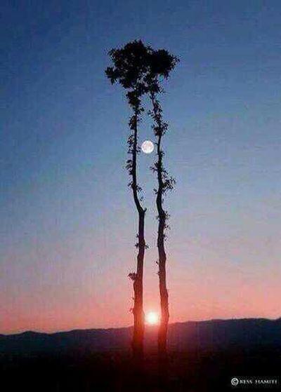 sun & Moon in one
