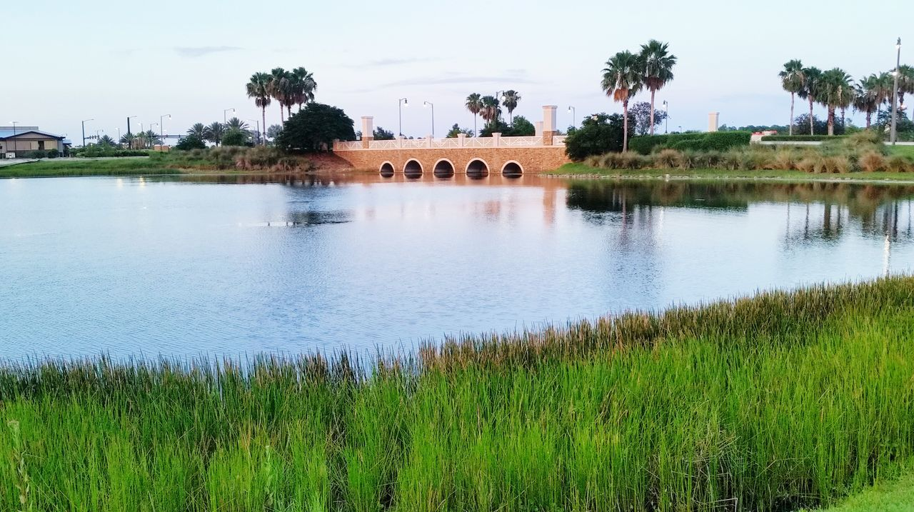 built structure, architecture, water, tree, day, sky, arch, building exterior, nature, grass, outdoors, palm tree, green color, travel destinations, bridge - man made structure, beauty in nature, scenics, growth, history, no people, landscape