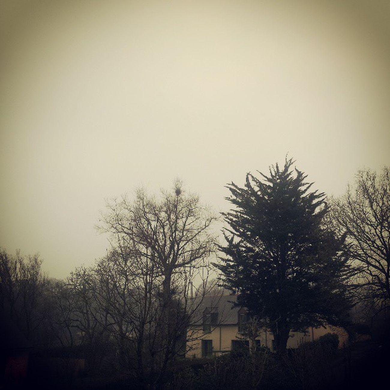 Nous voila bien arrivé en Bretagne Rennes Vezin Pluie tempsbreton weekend