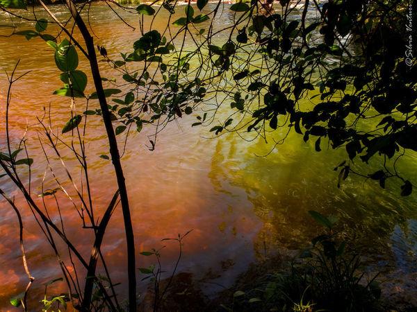 Backwoodsbrazil Colored Water Nature River Water