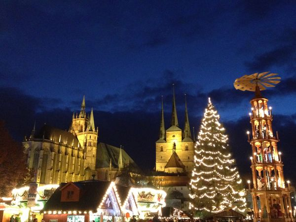 Christmas Tree Christmastime Christmas Lights Christmas Time Christmas Market Christmas Xmas Xmas Tree Travel Sightseeing Seeing The Sights Sight Point Of Interest Erfurt Germany Cathedral Domplatz Public Square Night Evening Dawn Illuminated