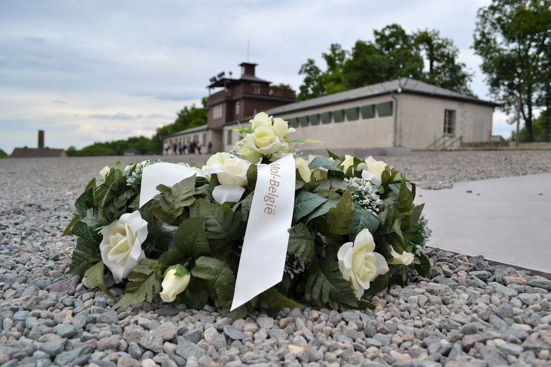 Buchenwald Buchenwald Memorial Concentrationcamp Flower Focus On Foreground In Memoriam Kranz Kz Petal Sky Wreath