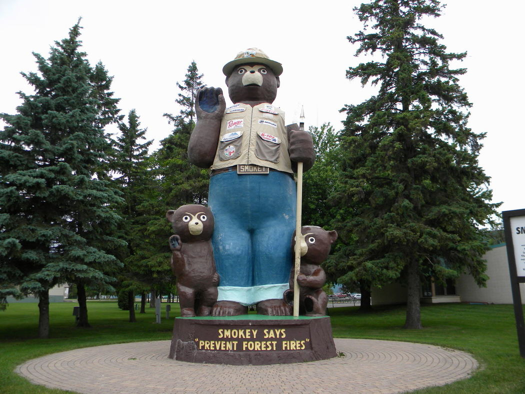 Bear Minnesota Smokey The Bear Art And Craft Bear Cubs Communication Day Grass Growth Low Angle View No People Outdoors Park Pine Tree Sculpture Sky Statue Summer Text Tree