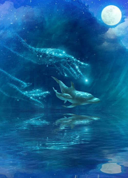 Underwater Blue Sea Animals In The Wild Water UnderSea Sea Life Nature Whale Mammal Animal Themes Outdoors Surreal Art Tranquil Scene Myeditions
