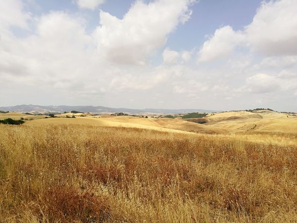 Cloud - Sky Landscape Nature No People Tranquility Orizon Volterra Countryside Italy Tuscany Countryside Summer Tuscany Summer