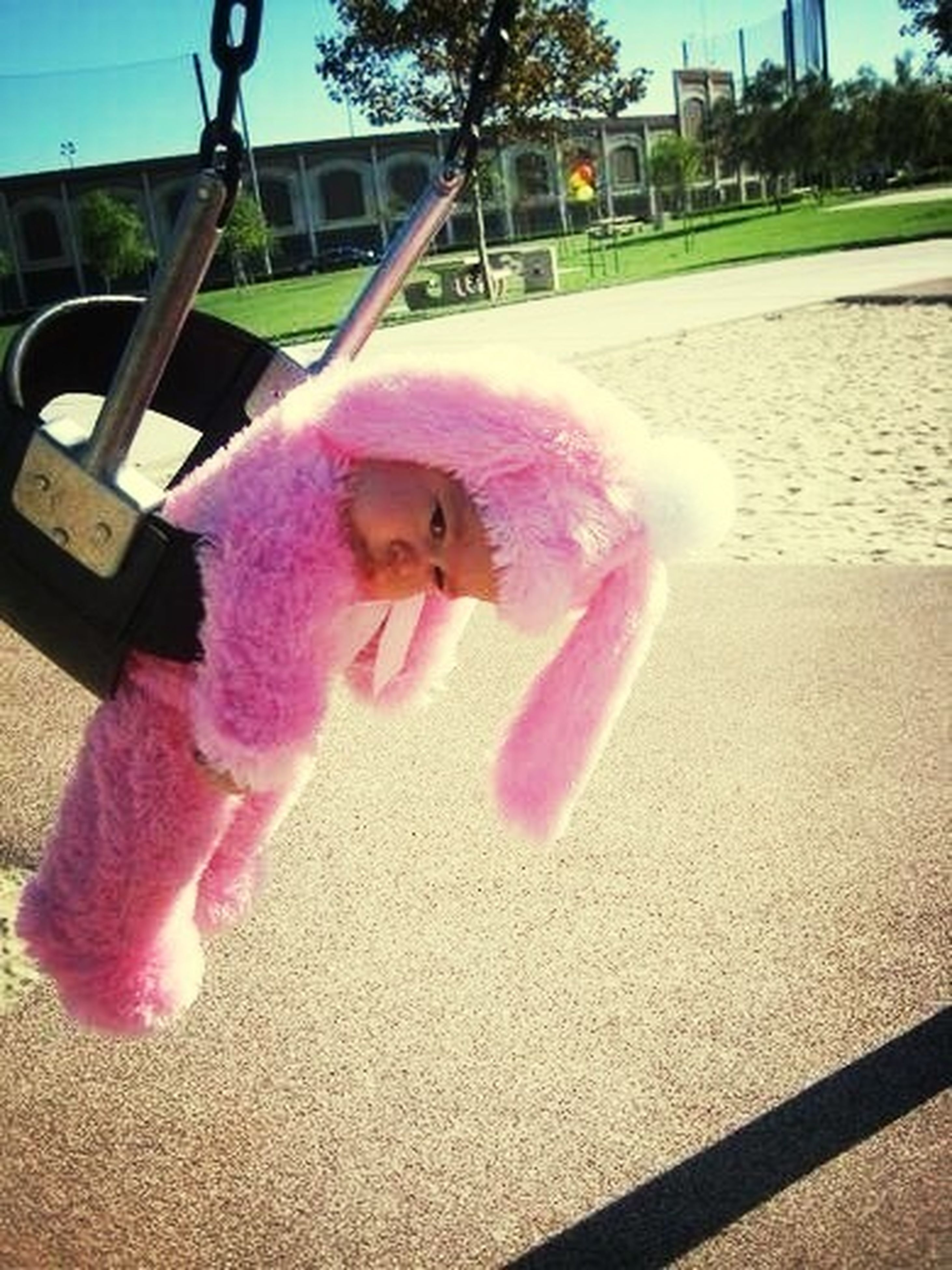 animal themes, toy, childhood, animal representation, one animal, dog, cute, full length, domestic animals, pink color, pets, playful, sunlight, elementary age, day, stuffed toy, outdoors, playing, street, close-up