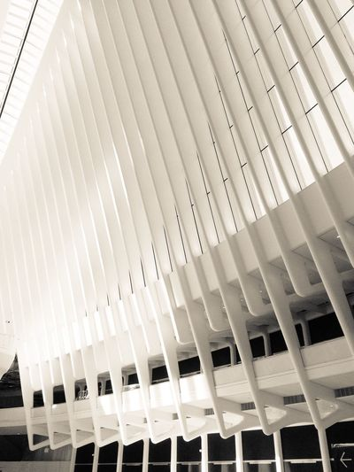 White Architecture Purity Calatrava Oculus Ribs Architectural Detail Structure New York