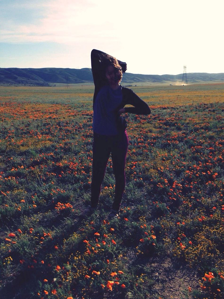 Poppy Flowers Enjoying Nature Love Gods Creation